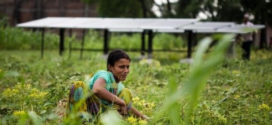 INDIA: The Power of the Sun