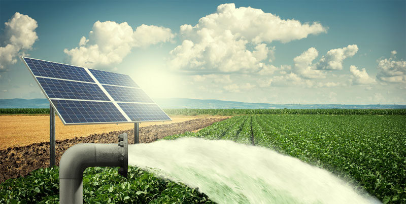 Solar Pumping in India
